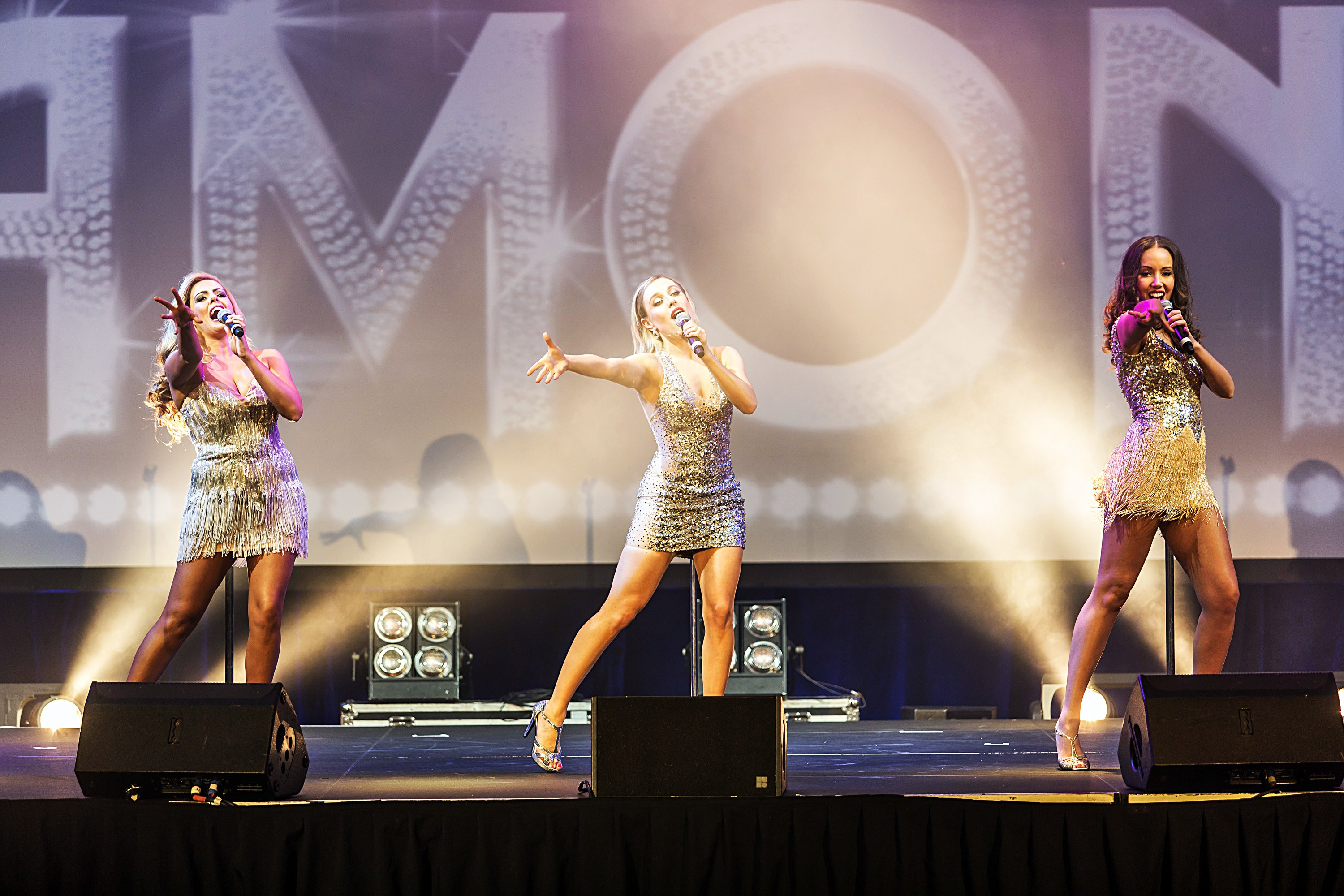 The Diamonds Performing on the stage